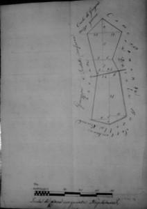cartina 6